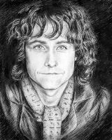 Peregrin Took by MaxduPlantier