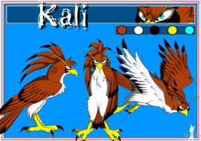 Kali reference 2011 by Nightdoodles