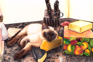 Siamese With Cheese by FelesTacita