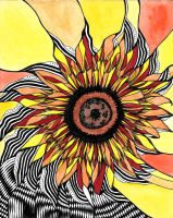 Sunflower by CristianoTeofili