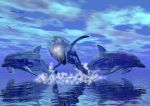Dolphin Dream by MithrilRose