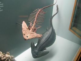 DNH Diplocaulus by TheMacronian
