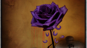 The Tears of the Rose by trumpetgirl333