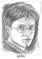 Harry Potter by LukeFielding