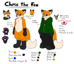 Chris the Fox Reference by PieMan24601