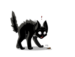 Ravenpaw and the spider by wanton-fox