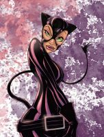 Catwoman 2 by dnmn89