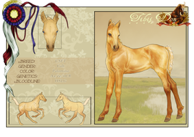 Foal Design 6 by Darya87