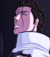 Aizen. I know about you... by KSei