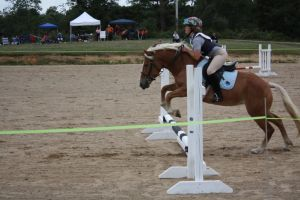 a horse and I jumping by WishersGirl