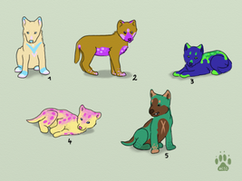 Wolf cub adopts by HappyDucklings