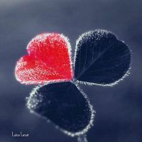 Lucky Love. by LuizaLazar