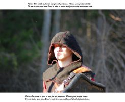 warrior portrait (57) by Mithgariel-stock
