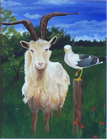 Billigoat and Seagull - acrylic painting by Giselle-M