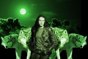 PETER AND THE WOLVES II by crystalaki