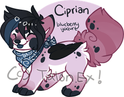 MYO Sushi: Ciprian the Blueberry Yogurt by TalonEX