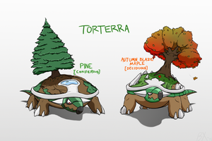 Torterra Subspecies from Canada by masterbx