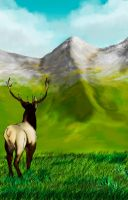 Elk by JulianaRoad7