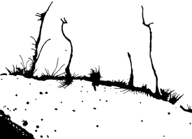 India Ink 1 by tirzacantfail