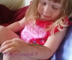 raine and slim the stick insects by frogslave69