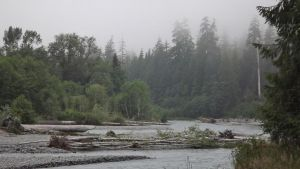 Misty Morning on The HoH River by Speck2