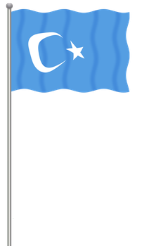 Flag of East Turkestan by llmatako
