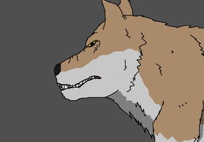 A Wolf Drawing by TheSpiderAdventurer