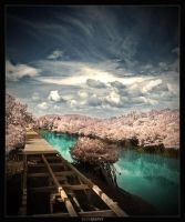 Artificial IR Tone by kharismaaditya
