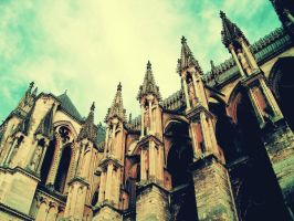 Cathedrale Notre-Dame de Reims by green-daydreamer