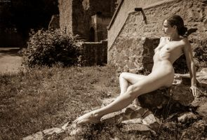 Lady of the castle 6 by gb62da