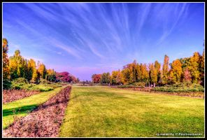 autumn morning by Iulian-dA-gallery