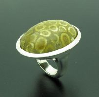 Jasper Coral Ring by orfeujoias