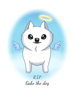 Farewell, Gabe the dog by to-much-a-thing