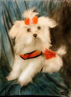 chanel the maltese by me3xR