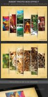 Insert Photo Box Effect Template by Godserv