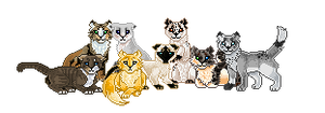 Pixel cats by Shakshun