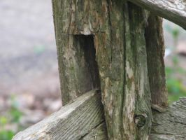 Wooden Fence by jessiNJ