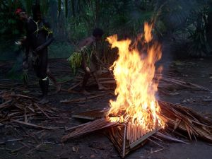 Fire stock by Aqua-Stock