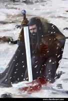 Snow and blood by claudiocerri