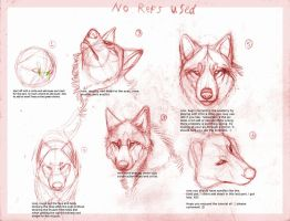 Wolf drawing tutorial by B-theawsomegeek