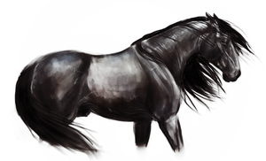 black horse speedpaint by Pyllyrasva