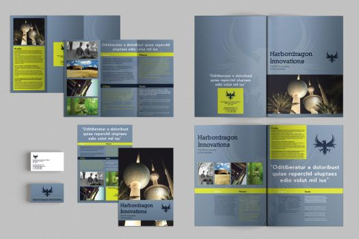 Set of Brochures / Stationery 09 by andre2886