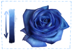 Blue rose by babi00xd