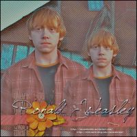 Ron Weasley by oscarelnoble