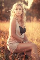 Summer Glow II by JimP4nsen