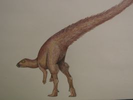 Leaellynasaura amicagraphica by spinosaurus1