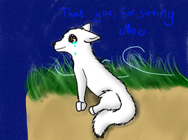 .:Thank You:. For AllietheDog by M0ssie