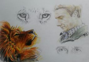 'In your eyes I see the lion that hides inside' by Vanimelda4