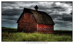 Processed Barn by needlz