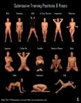 Submissive Pose Chart: Cher by LexLucas